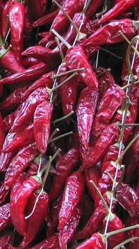 peperoncino_rosso_3.2.jpg